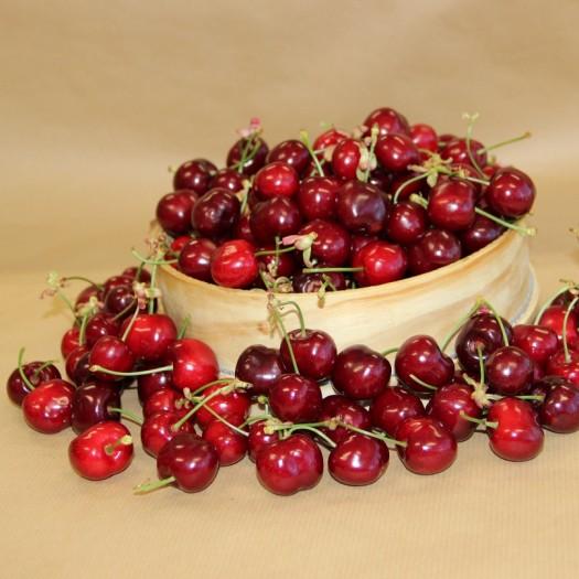 Cherry - António Laia