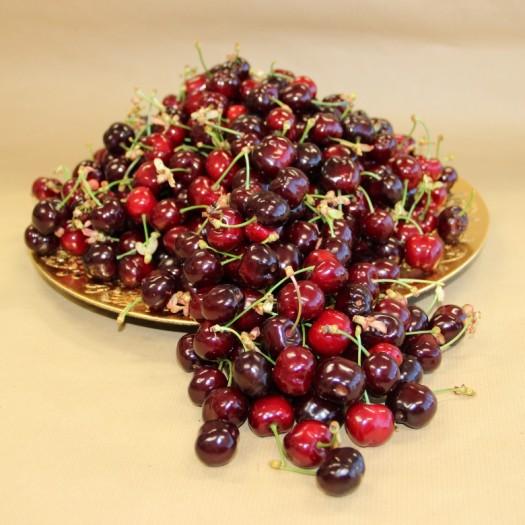 Cherry - Jaime Sequeira